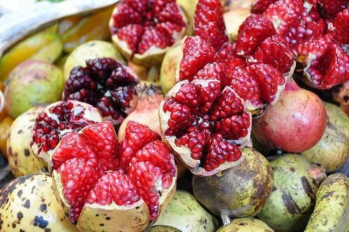 grenadier - punica granatum - pépinière du bosc - variété - acheter