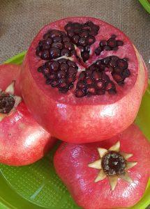 acheter grenadier - punica granatum - pépinière du bosc - variété - acheter plant pépins tendres
